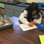 Student sitting next to a tray full of beakers, recording observations on a sheet of paper.